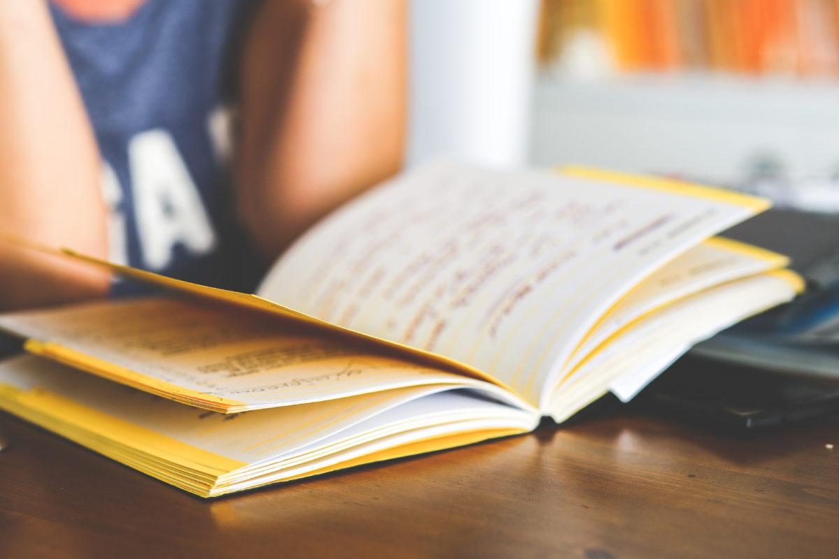 Dane dla studentów w celu podjęcia stażu lub praktyki – wszystko o wzmocnieniu zawodowym.